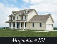 Magnolia #151